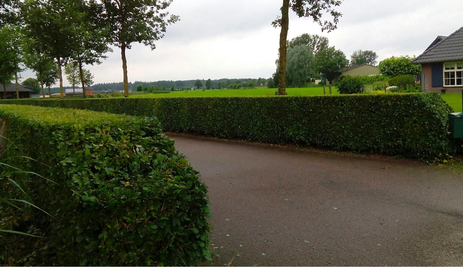 Hovenier Woudenberg